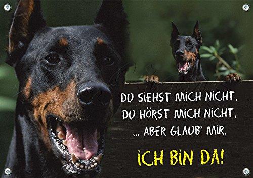 Hundeschild Dobermann Pinscher - stabiles Schild aus 1,5 mm Metallplatte - bis DIN A3 bestallbar, 1. DIN A5