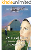 Valley of Hope (The Amish of Lancaster: An Amish Christian Romance Book 4) (English Edition)