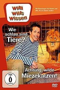 Willi will's wissen - Wie schlau sind Tiere? / Achtung: wilde Miezekatzen!