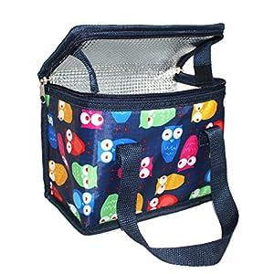 TEAMOOK Kühltasche Kleine Lunch Tasche Isoliertasche Lunchbag zur Arbeit Schule gehen 4 Liter, 22 x 17 x 12 cm Blaue Eule