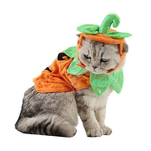 ANIAC Katze Kürbis Hat Umhang Halloween Custume Cape Poncho für Kitty Kleine Mittelgroßen Hund (Halloween-lichter Amazon Orange)