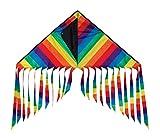 #5: In The Breeze Rainbow Stripe Flutterfly Delta Kite