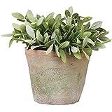 Esschert AT03 - Vaso da fiori rotondo, in terracotta, effetto usato