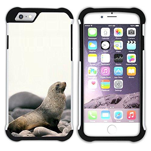 Graphic4You Seehund Tier Weiß Hart + Weiche Kratzfeste Hülle Case Schale Tasche Schutzhülle für Apple iPhone 6 / 6S Design #3