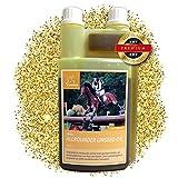 EMMA ♥ Leinöl für Pferde & Hunde I Pferdefutter I Ergänzungsfutter I Omega 3-6 Fettsäure im Öl I kaltgepresst I Vitamine A, D & E I für glänzendes Fell & Energie 1 Liter