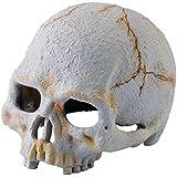 Exo Terra Refugio Fósil Dino Primate