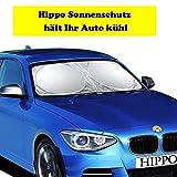 Hippo Protezione Solare Auto, Parasole Auto Parabrezza per Protezione dai Raggi UV, Flexible Misura per Auto, SUV, Camion (160x 90cm/63 x35inch), Sliver