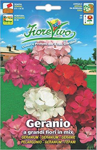 Hortus 60SDFG114 Fiorevivo Geranio Grandi Fiori, Mix, 13x0.2x20 cm