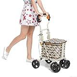 XYLUCKY Chariot à roulettes Portable à roulettes pour Personnes âgées à 4 Roues avec Double Frein