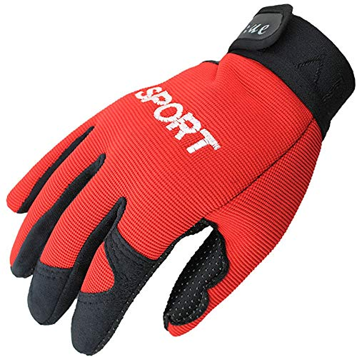 Hhpcspc Männer und Frauen Fahrradhandschuhe Touchscreen Winterhandschuhe Dicke warme Handschuhe Outdoor Klettern Laufen Skifahren Reithandschuhe (Color : Schwarz, Size : Kostenlos)
