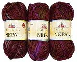 3 x 200 Gramm Strickwolle Himalaya Nepal, 600 Gramm Wolle super bulky, Armstrickwolle, Handstrickwolle mit Farbverlauf (bordeaux flieder)