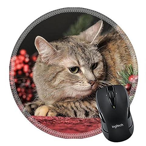 MSD en caoutchouc naturel Tapis de souris Image ID 35479603European Shorthair celtique Cat 3802