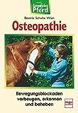 Osteopathie: Bewegungsblockaden vorbeugen, erkennen, beheben (Gesundes Pferd)