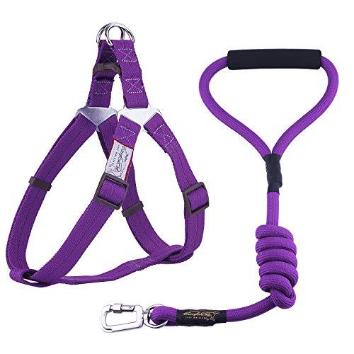 ThinkPet ComfortPro Kit de Correa y arnés Perro Conjunto Correa de Cuerda Resistente y arnés Ajustable para Perros Mediano Grande para Paseo