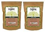 Radico Ritha-Fruchtpulver 2er-Pack (2 x 100g) Sapindus Mukorossi - Waschnuss (bio, vegan) x2