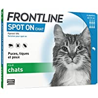 FRONTLINE Spot-on Chat - Anti-puces et anti-tiques pour chat - 6 pipettes