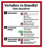 Schild Aushang Verhalten im Brandfall, 18x20cm, mit UV-Schutz, PVC-Aufkleber, ISO 7010, Betriebsaushang Notfallplan