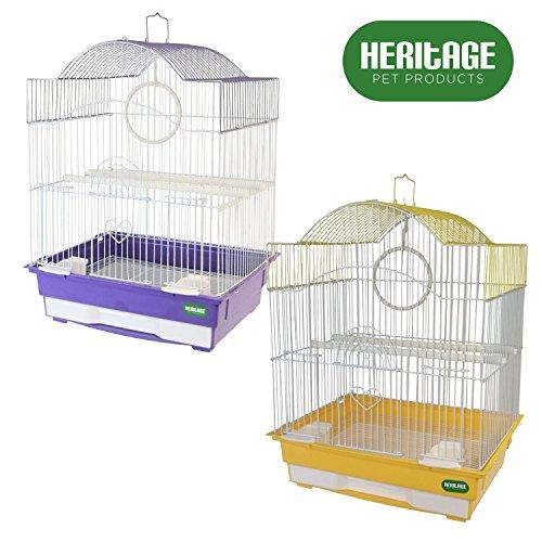 cage oiseau perruche