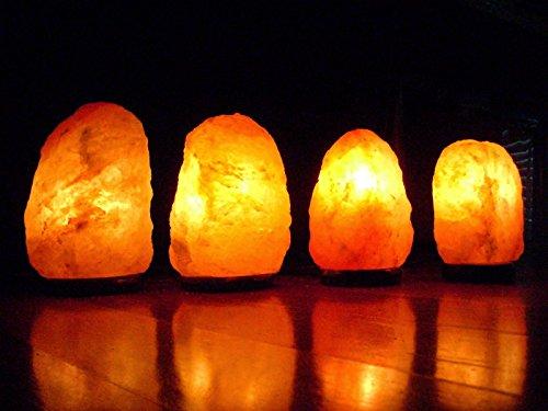 Zoom IMG-3 geofossilstm doppia lampada in cristalli