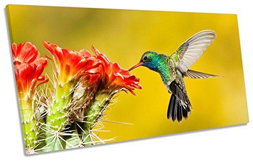 Humming Bird Jardinière Cadre sur Toile Décoration Murale panoramique d'impression Photo, 80cm Wide x 40cm High