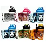 Laxmi collection jungle theme gift set of lunch box with water bottle, pack of 6