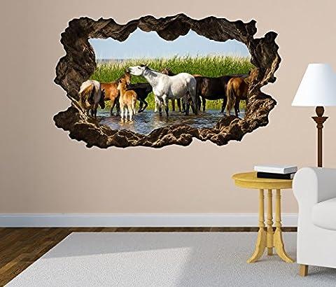 3D Wandtattoo Pferde Pferd Tiere Herde Wasser Bild Foto Wandbild Wandsticker Wandmotiv Wohnzimmer Wand Aufkleber 11F179, Wandbild Größe F:ca.