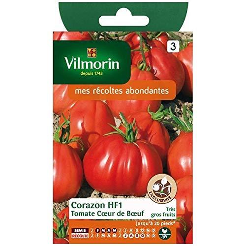Vilmorin - Sachet graines Tomate coeur de boeuf Corazon HF1