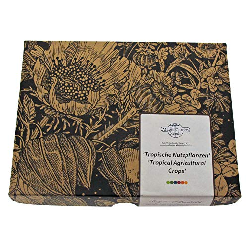 'Tropische Nutzpflanzen: Kaffee, Banane, Maracuja, Reis & Tee' Samen-Geschenkset mit 5 weltberühmten exotischen Pflanzen - Pflanze Tee