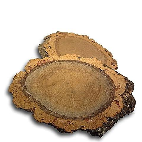 Ecorce Chene - 2 Rondelles de bois de liège /