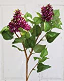Set 2 x künstlicher Fliederzweig DELIAH, 2 Blütenrispen lila, grüne Blätter, 80 cm - Deko Zweig / Kunst Flieder- artplants