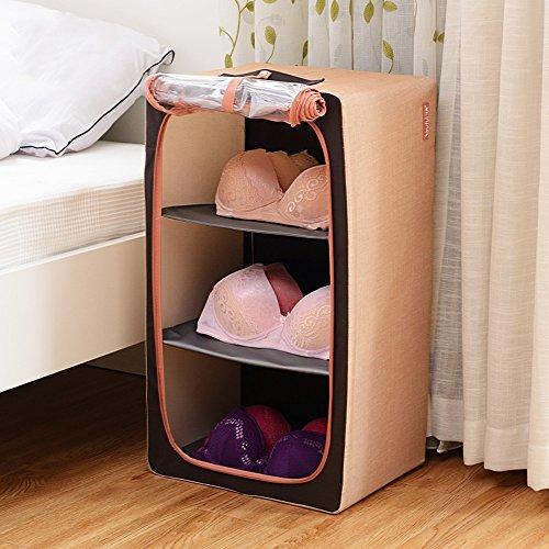 Biancheria intima spessa Box Oxford telaio in acciaio cassetto - Style immagazzinaggio dei vestiti della scatola trasparente Abbigliamento Storage Box ( colore : 2 )