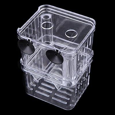 Walmeck Multifunktionale Fischzucht Isolation Box Inkubator für Fisch Tank Aquarium Zubehör