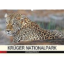 KRÜGER NATIONALPARK Afrikas Perle (Wandkalender 2018 DIN A3 quer): Faszinierende Tiere und Natur (Monatskalender, 14 Seiten ) (CALVENDO Tiere) [Kalender] [Apr 25, 2017] Woyke, Wibke