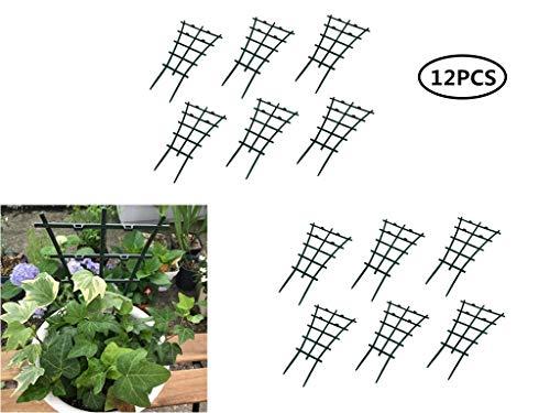 Lot de 12 Treillis en Plastique pour Plantes aromatisées pour Culture de tomates et Autres Fruits et légumes grimpants