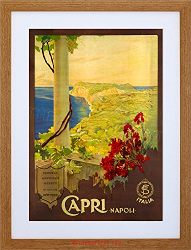 TRAVEL CAPRI ISLAND GULF NAPLES ITALY SEA SUN FLOWER FRAMED PRINT F12X6746 (Island Light Capri)