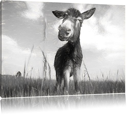 Esel in einem Feld in sonnigen Tag Kunst Kohle Effekt, Format: 100x70 auf Leinwand, XXL riesige Bilder fertig gerahmt mit Keilrahmen, Kunstdruck auf Wandbild mit Rahmen, günstiger als Gemälde oder Ölbild, kein Poster oder Plakat