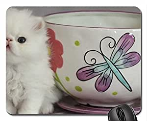 teacup & cute persian kitty Mouse Pad, Mousepad (Cats Mouse Pad)