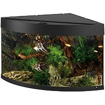 aquarium d angle. Black Bedroom Furniture Sets. Home Design Ideas