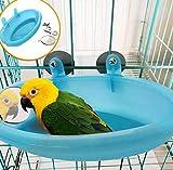 Hpybest Baignoire pour Perroquet avec Miroir pour Animal Domestique Accessoires de...