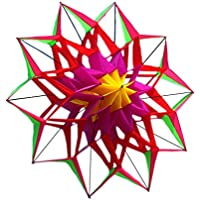 FZSWD 3D Lotus Flower Kite con Mango y línea Good Flying Factory Outlet