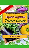 Steps for starting a low budget organic vegetable Terrace garden: A complete guide
