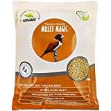 Nature Forever Millet Magic, 900 g