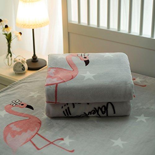 Preisvergleich Produktbild Doppelt dick Winter Decke dicke Coral Fleece Decken single twin Flanell- warme Decke, Klasse A, 150cmx200cm, Flamingo