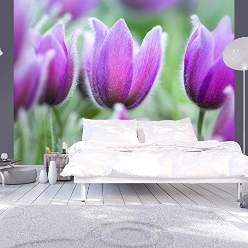 MURANDO® FOTOMURAL 400X309 CM ! PAPEL TEJIDO-NO TEJIDO  FOTOMURALES - PAPEL PINTADO 400X309 CM ! 100406-120