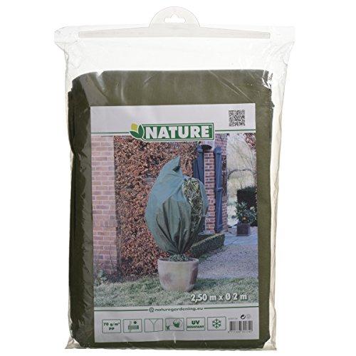 Nature housse de gelée végétale en toison 2x2,5 m verte 6030134