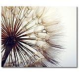 WandbilderXXL Gedrucktes Leinwandbild Big Dandelion 100x80cm - in 6 verschiedenen Größen. Fertig gespannt auf Holzkeilrahmen. Günstige Leinwanddrucke für Kinderzimmer Schlafzimmer.