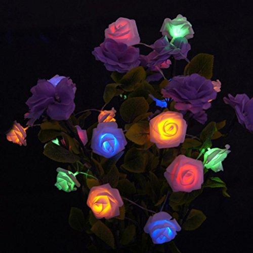 2.2M 20LED Simulation der Rosen-Blumen-Schnur-Licht-Ketten-Dekoration-Kette (mehrfarbig) -