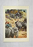Telecharger Livres Copie de Couleur de Roches De La Region d Hommes d Elephants de C1880 Inde (PDF,EPUB,MOBI) gratuits en Francaise