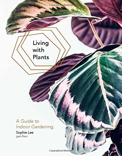 living-with-plants-a-guide-to-indoor-gardening
