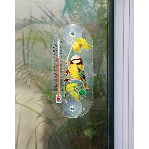 bird-design-window-thermometer-suction-cups-garden-outdoor-temperature-degrees